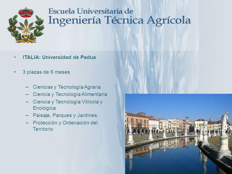 ITALIA: Universidad de Padua 3 plazas de 6 meses –Ciencias y Tecnología Agraria –Ciencia y Tecnología Alimentaria –Ciencia y Tecnología Vitícola y Eno