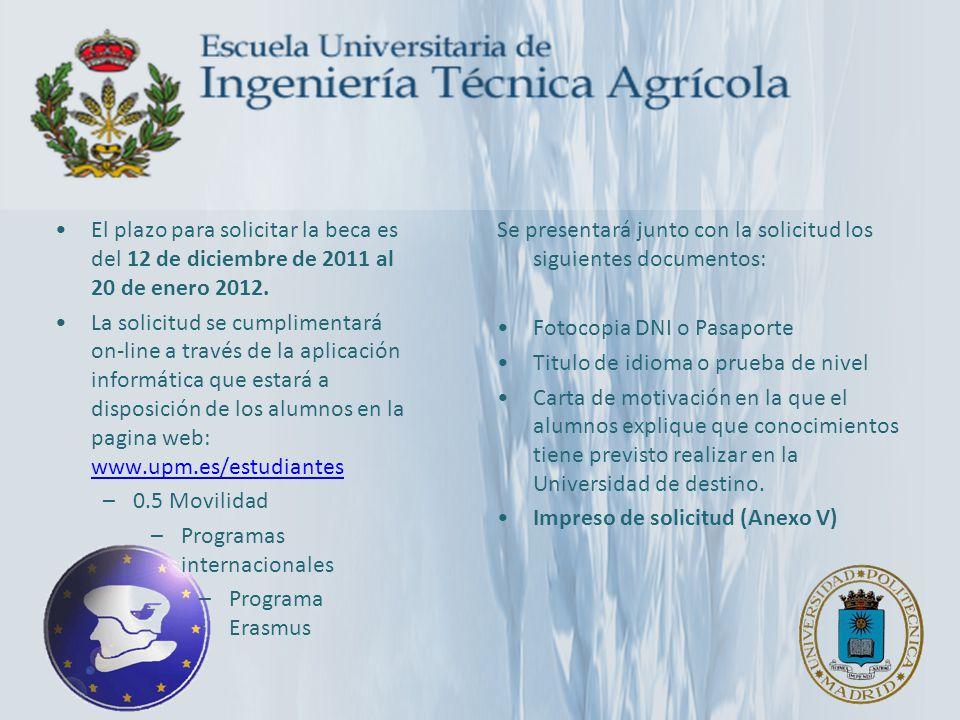 El plazo para solicitar la beca es del 12 de diciembre de 2011 al 20 de enero 2012. La solicitud se cumplimentará on-line a través de la aplicación in