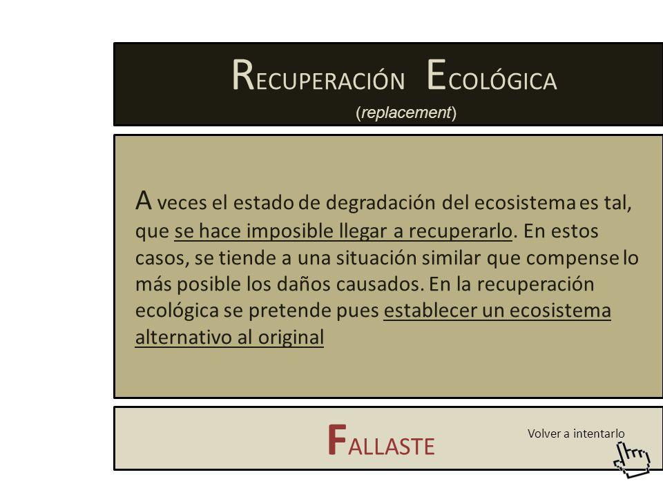 R EHABILITACIÓN F ALLASTE E n ella se actúa sobre el ecosistema degradado en un intento de recuperar el estado original.