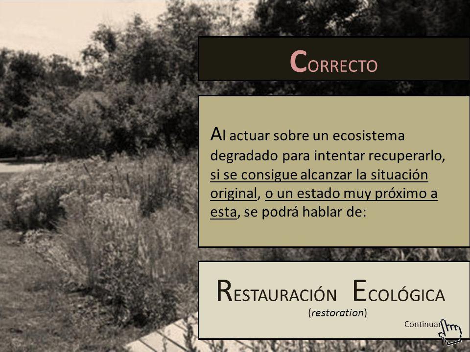 C ORRECTO A l actuar sobre un ecosistema degradado para intentar recuperarlo, si se consigue alcanzar la situación original, o un estado muy próximo a esta, se podrá hablar de: R ESTAURACIÓN E COLÓGICA (restoration) Continuar
