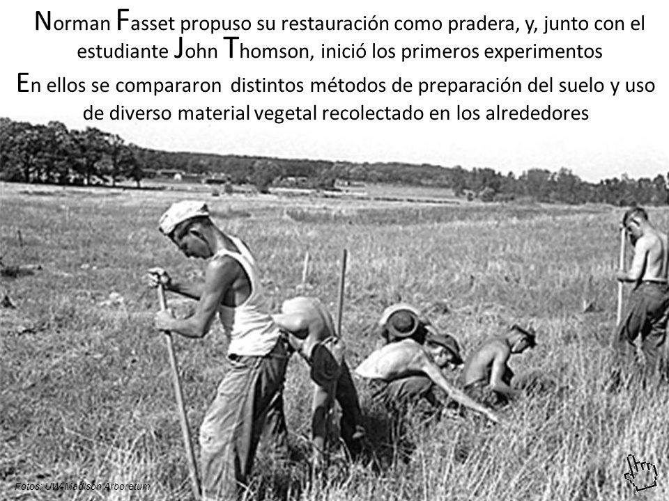 N orman F asset propuso su restauración como pradera, y, junto con el estudiante J ohn T homson, inició los primeros experimentos E n ellos se compararon distintos métodos de preparación del suelo y uso de diverso material vegetal recolectado en los alrededores Fotos: UW-Madison Arboretum