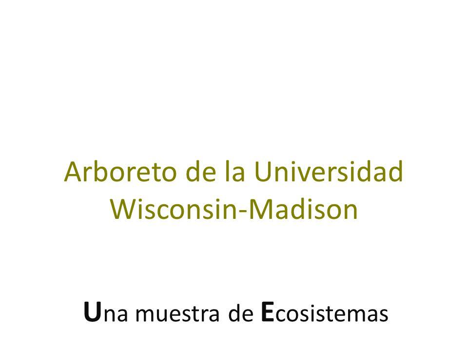 U na muestra de E cosistemas Arboreto de la Universidad Wisconsin-Madison