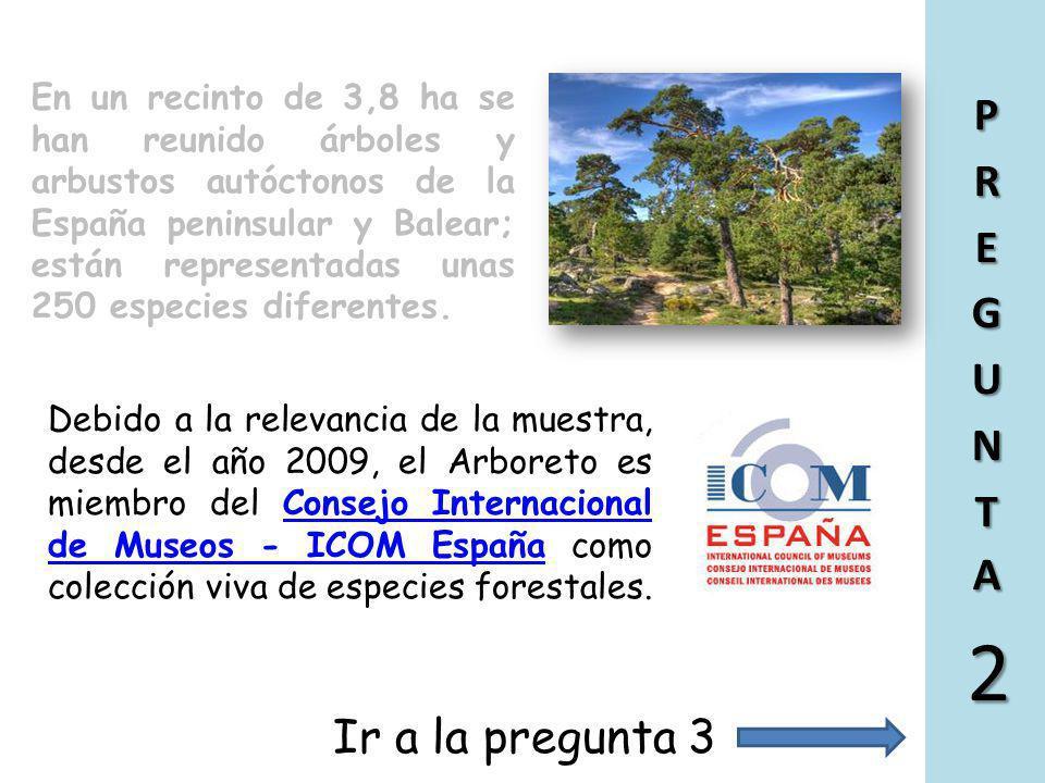 El Arboreto en cuestión pertenece a la Red de Centros de educación ambiental de la Consejería de Medio Ambiente y Ordenación del Territorio de la Comu