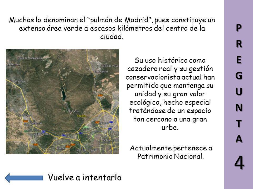 El Monte de El Pardo quizá deba su nombre al color pardo de la tierra, o quizá a la antigua abundancia de oso pardo en la zona. Ya el Libro de la Mont