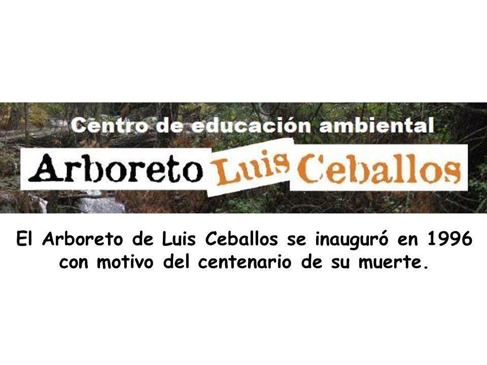 El diseño no sólo del Arboreto de Montes, sino también de todos los jardines de la Ciudad Universitaria, estuvo a cargo de Luis Ceballos en 1941. 5 Co