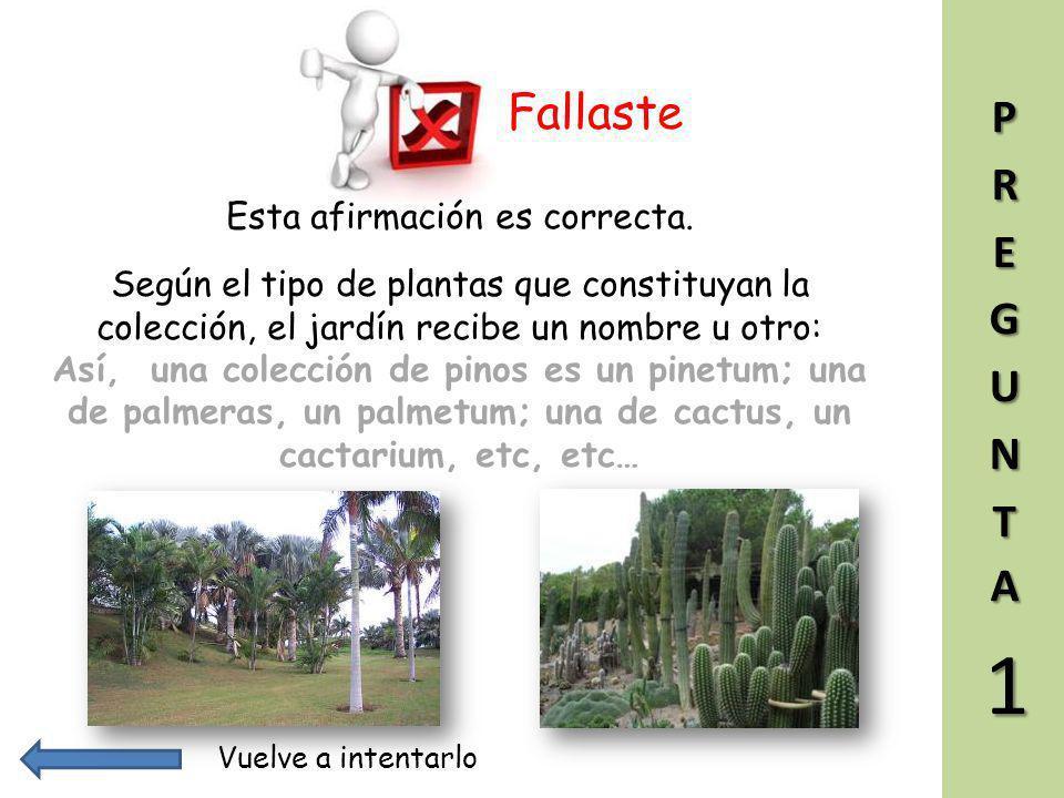 Vuelve a intentarlo Esta afirmación es correcta. Arboretum significa conjunto de árboles plantados para su estudio y observación. 1 El término 'arbore