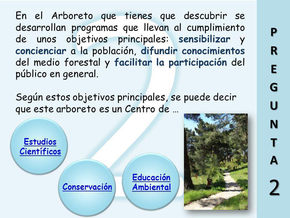 Ir a la pregunta 2 Esta afirmación es falsa. Un arboreto es un jardín botánico dedicado primordialmente a árboles y otras plantas leñosas, que forman