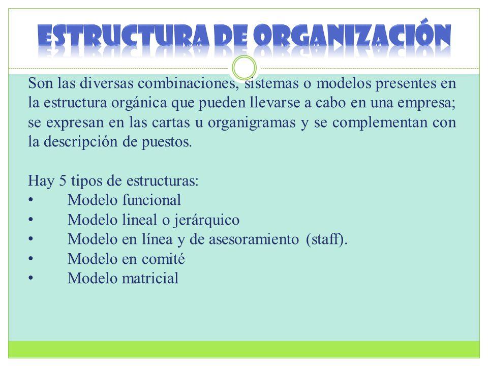 Son las diversas combinaciones, sistemas o modelos presentes en la estructura orgánica que pueden llevarse a cabo en una empresa; se expresan en las c