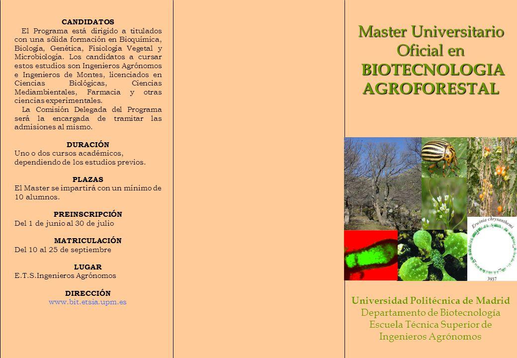 Master Universitario Oficial en BIOTECNOLOGIA BIOTECNOLOGIAAGROFORESTAL Universidad Politécnica de Madrid Departamento de Biotecnología Escuela Técnic