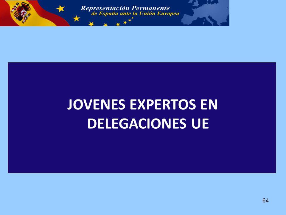 JOVENES EXPERTOS EN DELEGACIONES UE 64