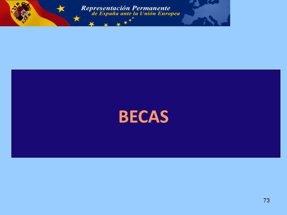BECAS 73