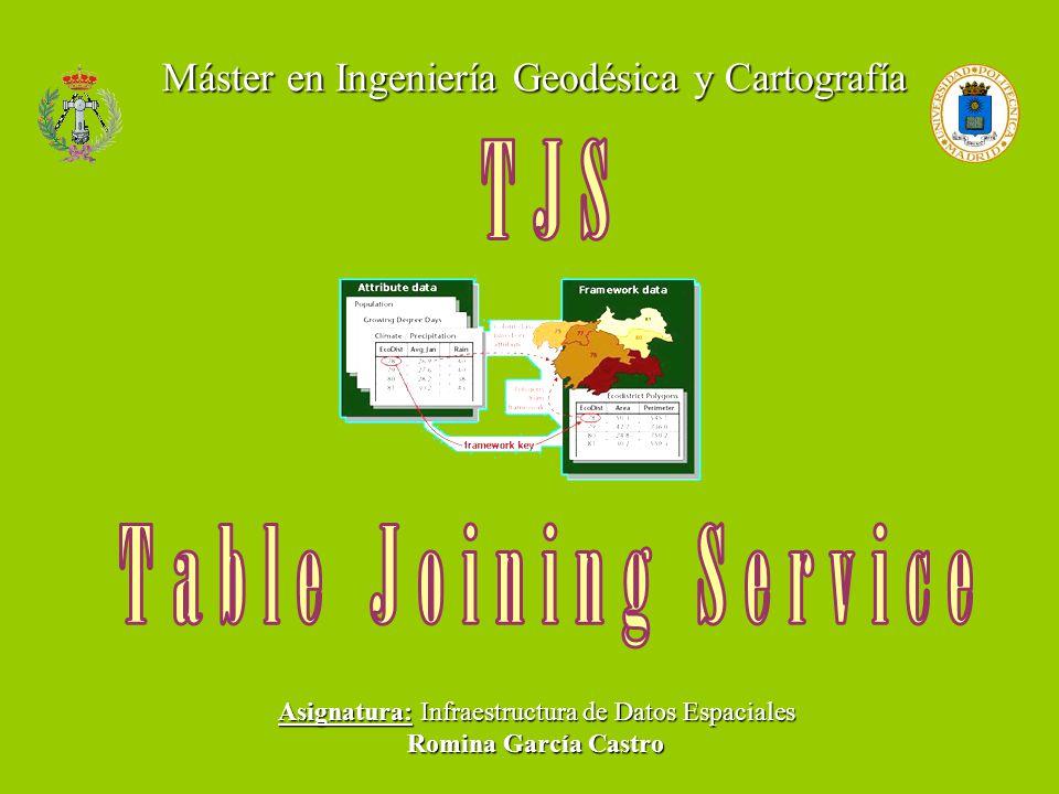 Máster en Ingeniería Geodésica y Cartografía Asignatura: Infraestructura de Datos Espaciales Romina García Castro