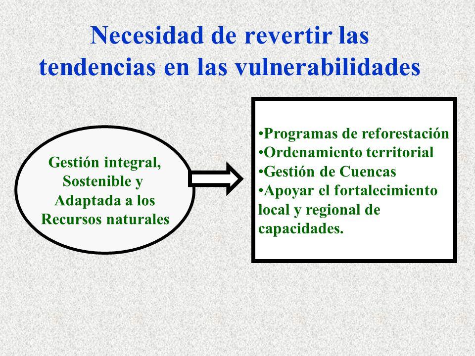 Necesidad de revertir las tendencias en las vulnerabilidades Programas de reforestación Ordenamiento territorial Gestión de Cuencas Apoyar el fortalec