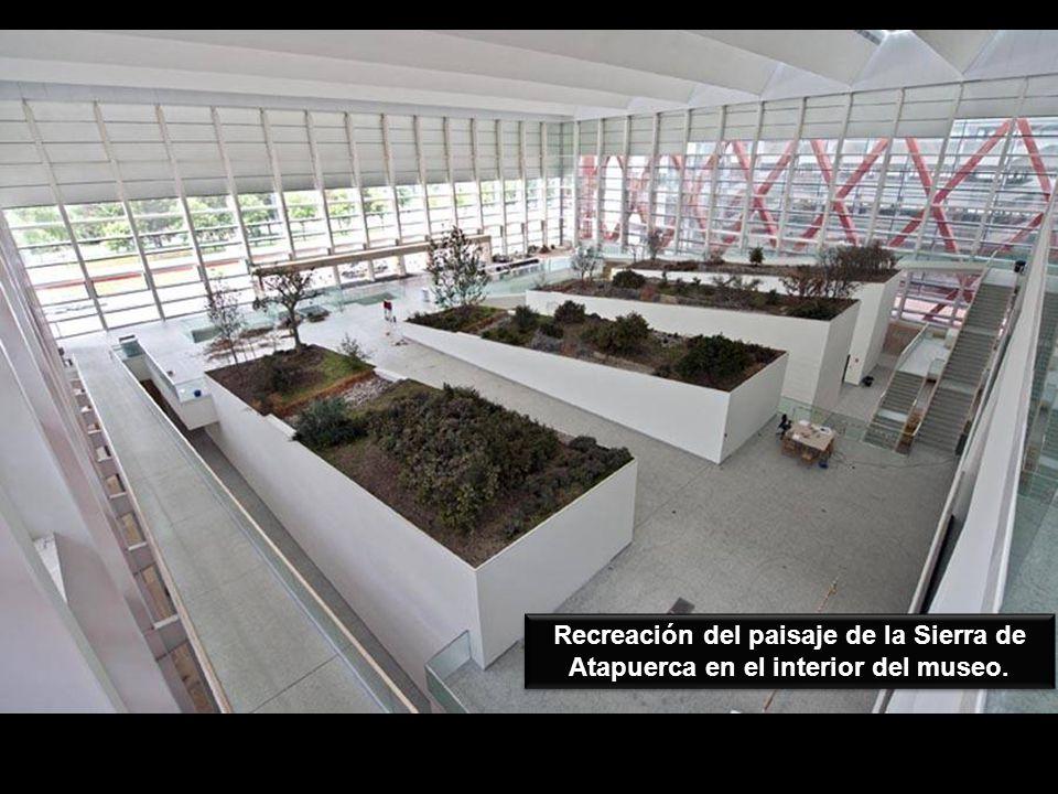 Recreación del paisaje de la Sierra de Atapuerca en el interior del museo.