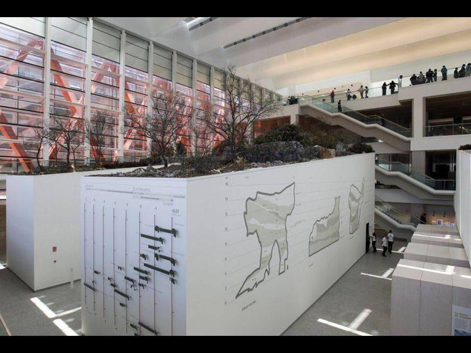 Homenaje a Ramón y Cajal Parte del segundo nivel o planta está dedicada al célebre científico español.