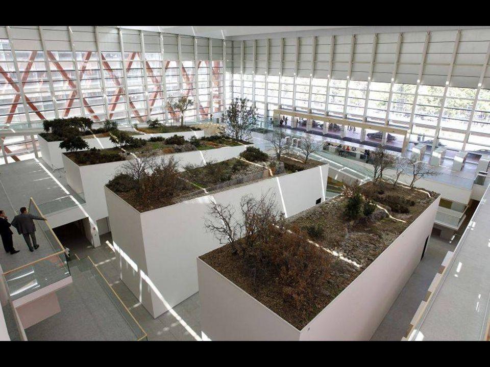 El Museo burgalés no está dedicado únicamente al yacimiento de Atapuerca, sino a toda la historia e investigación de la evolución humana.