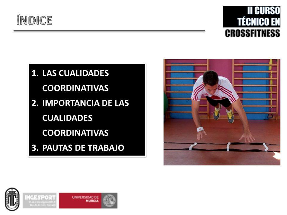 Las cualidades coordinativas representan una capacidad indispensable en el rendimiento del deportista, debido a la importancia que la técnica adquiere en la fase competitiva, siendo fundamental para su ejecución el ajuste de diferentes segmentos corporales en el espacio y el tiempo.