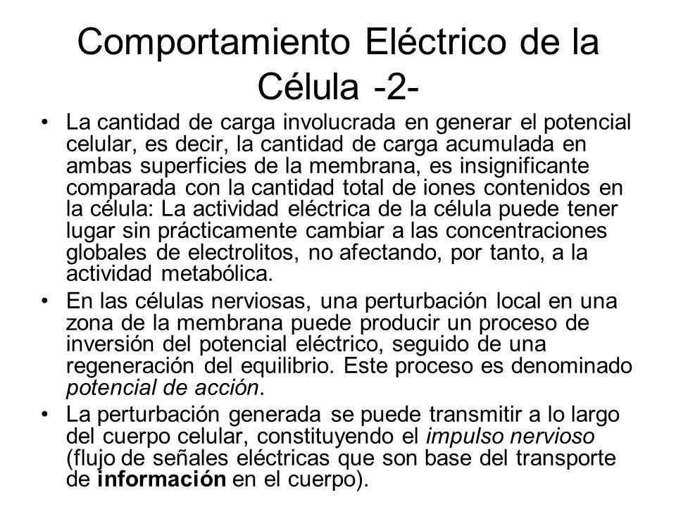 Comportamiento Eléctrico de la Célula -2- La cantidad de carga involucrada en generar el potencial celular, es decir, la cantidad de carga acumulada e