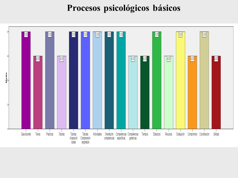 Procesos psicológicos básicos