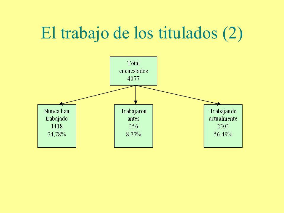 El trabajo de los titulados (2)