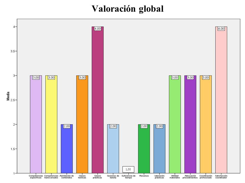 Valoración global 1,00