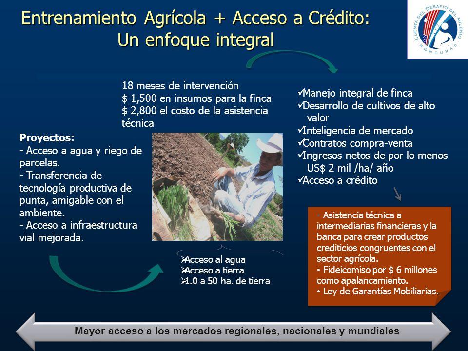 Entrenamiento Agrícola + Acceso a Crédito: Un enfoque integral 18 meses de intervención $ 1,500 en insumos para la finca $ 2,800 el costo de la asiste