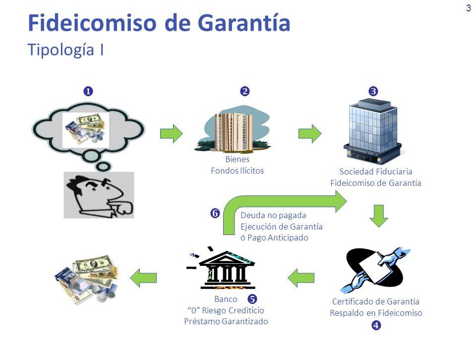 4 Fideicomiso de Inversión Tipología II Empresa Fachada Sociedad Fiduciaria Inversión de Excedentes Inversiones Definidas Sin importar rendimientos Liquidación de Inversión & Rendimientos