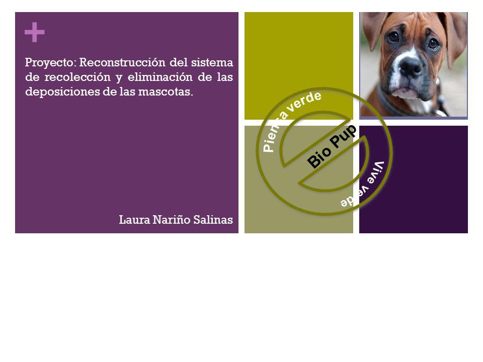 + Proyecto: Reconstrucción del sistema de recolección y eliminación de las deposiciones de las mascotas.