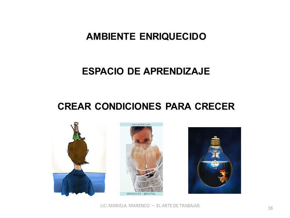 AMBIENTE ENRIQUECIDO ESPACIO DE APRENDIZAJE CREAR CONDICIONES PARA CRECER 16 LIC: MARIELA MARENCO – EL ARTE DE TRABAJAR