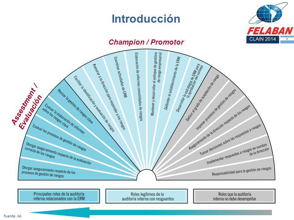 Champion / Promotor Assestment / Evaluación Fuente: IIA Introducción