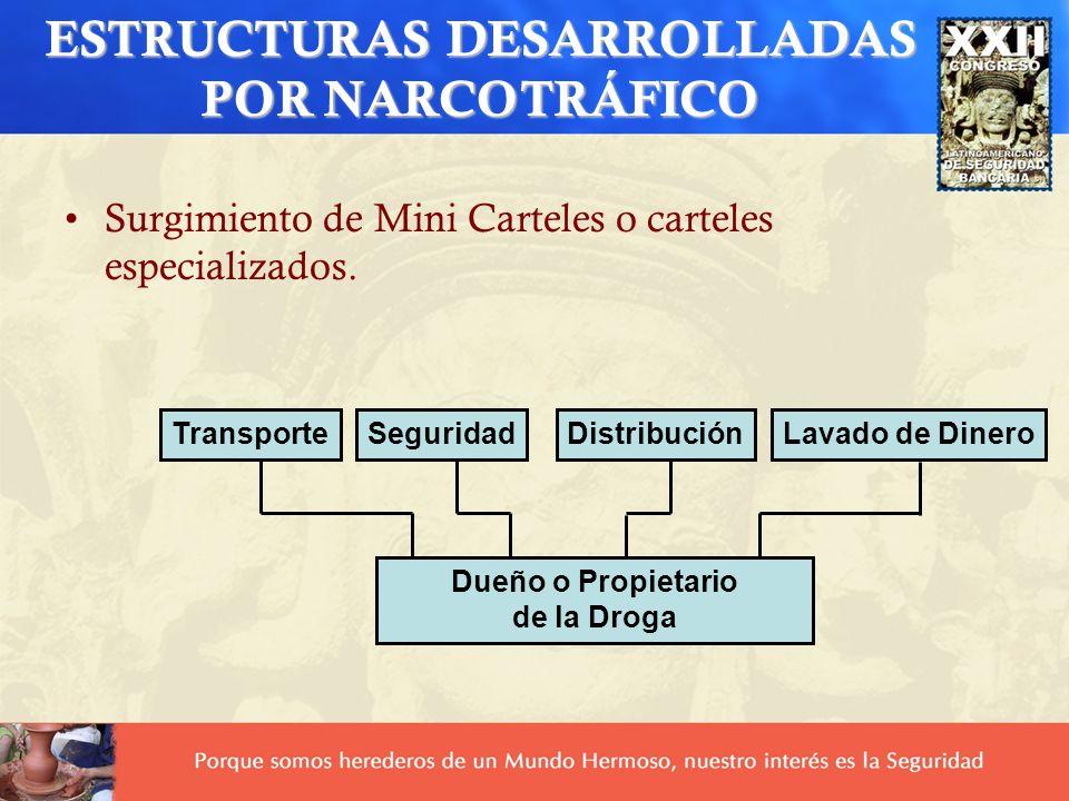 Surgimiento de Mini Carteles o carteles especializados. TransporteSeguridadDistribuciónLavado de Dinero Dueño o Propietario de la Droga ESTRUCTURAS DE