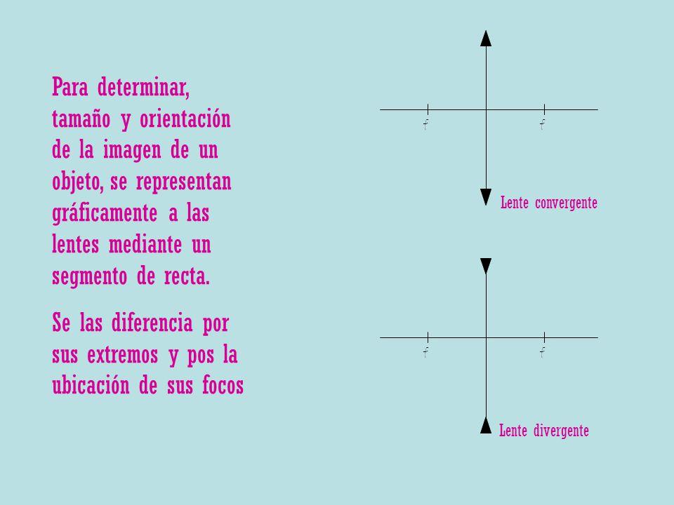 Para determinar, tamaño y orientación de la imagen de un objeto, se representan gráficamente a las lentes mediante un segmento de recta. Se las difere