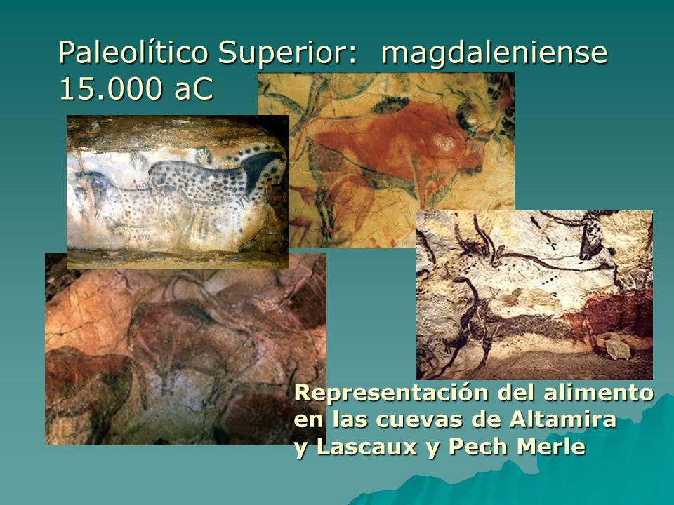 Representación del alimento en las cuevas de Altamira y Lascaux y Pech Merle Paleolítico Superior: magdaleniense 15.000 aC