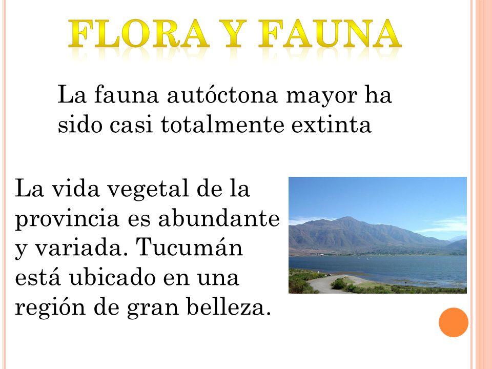 La fauna autóctona mayor ha sido casi totalmente extinta La vida vegetal de la provincia es abundante y variada. Tucumán está ubicado en una región de