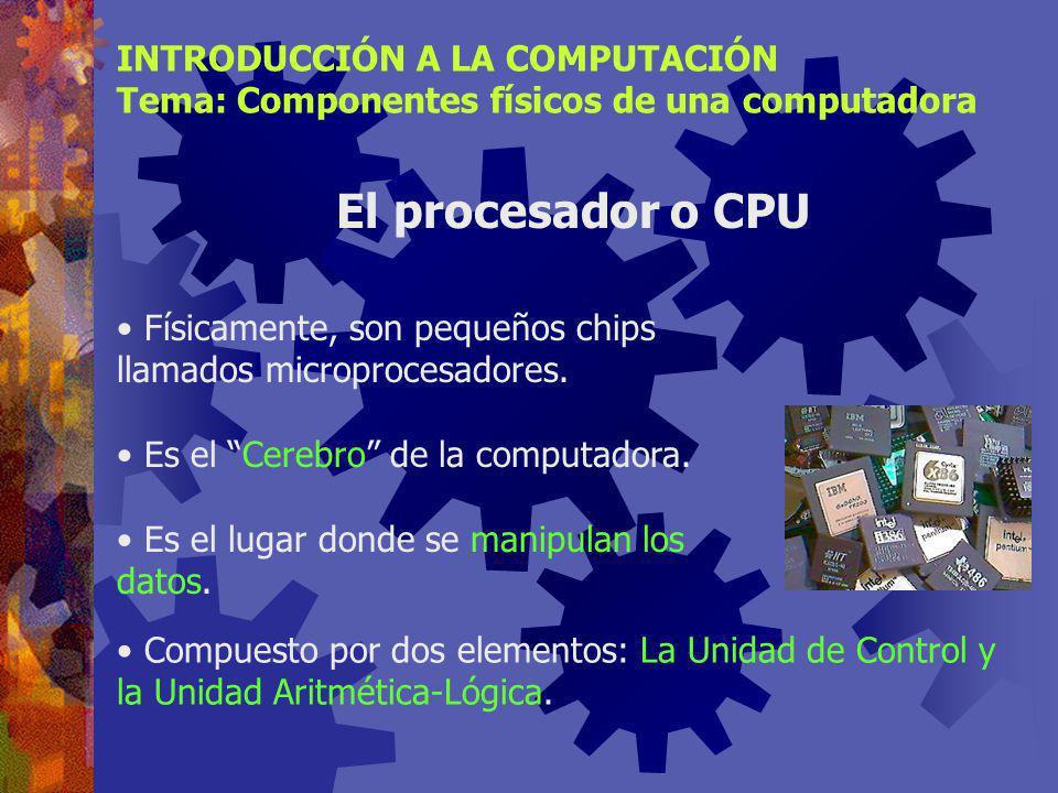 ¿Dónde se lleva a cabo el procesamiento de los datos? En la Unidad Central de Procesamiento (CPU) INTRODUCCIÓN A LA COMPUTACIÓN Tema: Componentes físi