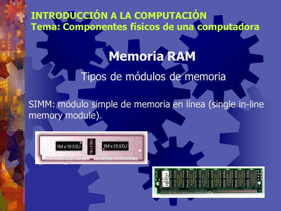 Son placas que contienen los chips de memoria y que se conectan a la tarjeta principal de la computadora. Son las piezas que se adquieren, para amplia