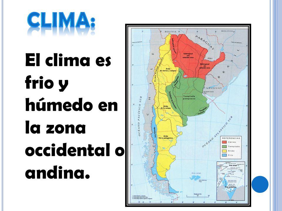 El clima es frio y húmedo en la zona occidental o andina.