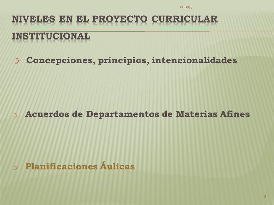Concepciones, principios, intencionalidades Acuerdos de Departamentos de Materias Afines Planificaciones Áulicas crisrig 3