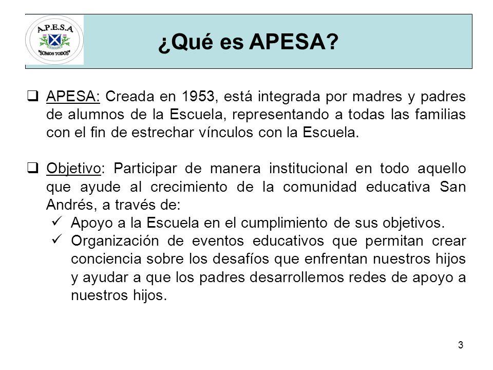 3 ¿Qué es APESA.