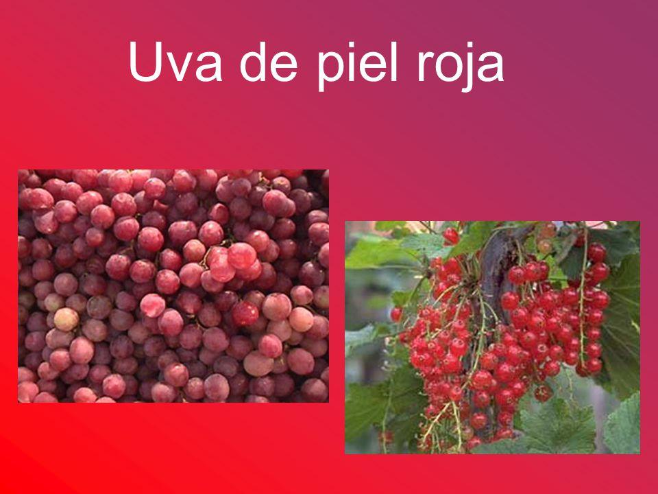 Uva de piel roja