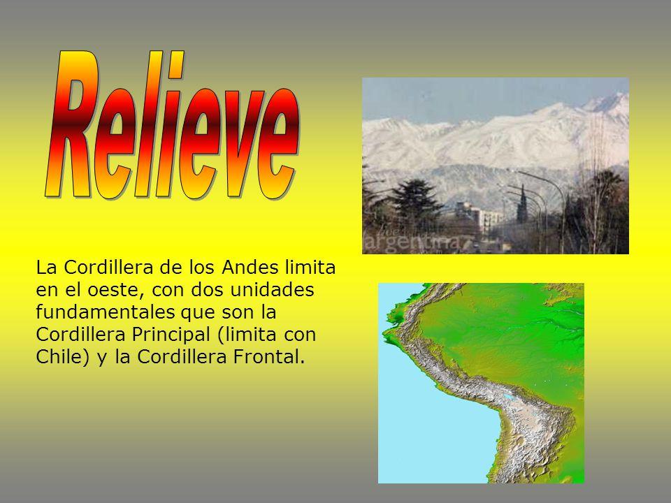 La Cordillera de los Andes limita en el oeste, con dos unidades fundamentales que son la Cordillera Principal (limita con Chile) y la Cordillera Frontal.