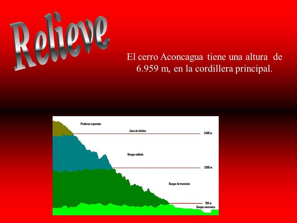 El cerro Aconcagua tiene una altura de 6.959 m, en la cordillera principal.