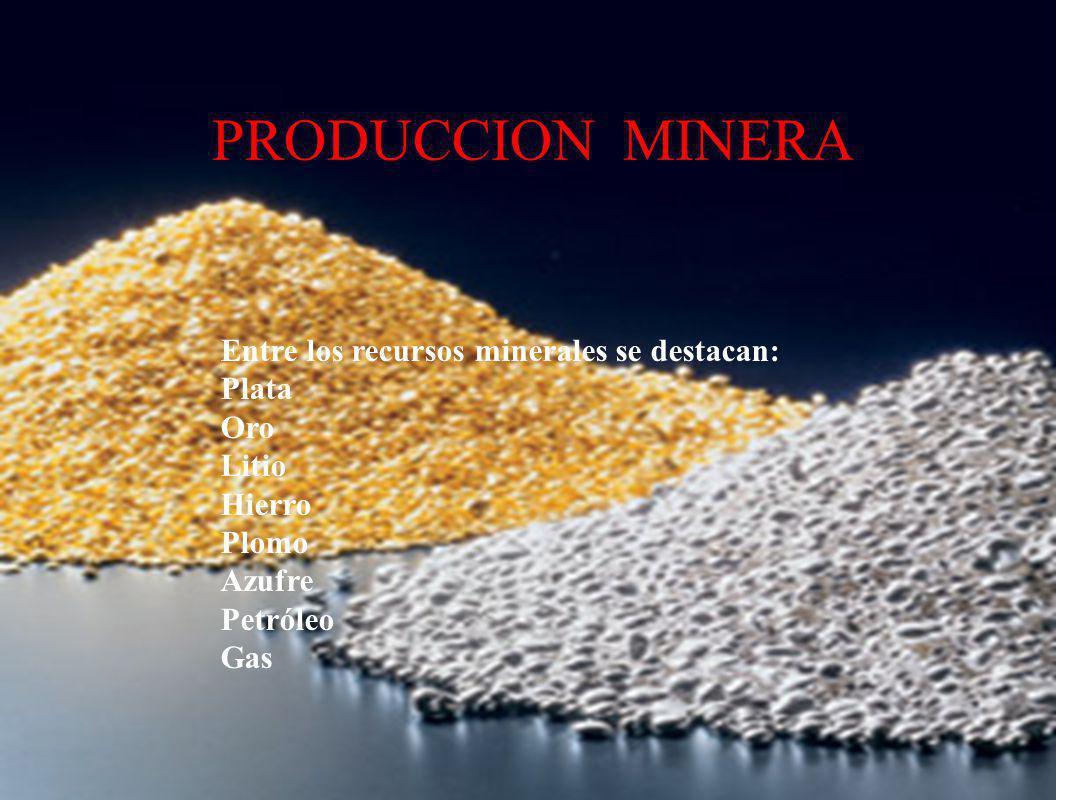 PRODUCCION MINERA Entre los recursos minerales se destacan: Plata Oro Litio Hierro Plomo Azufre Petróleo Gas