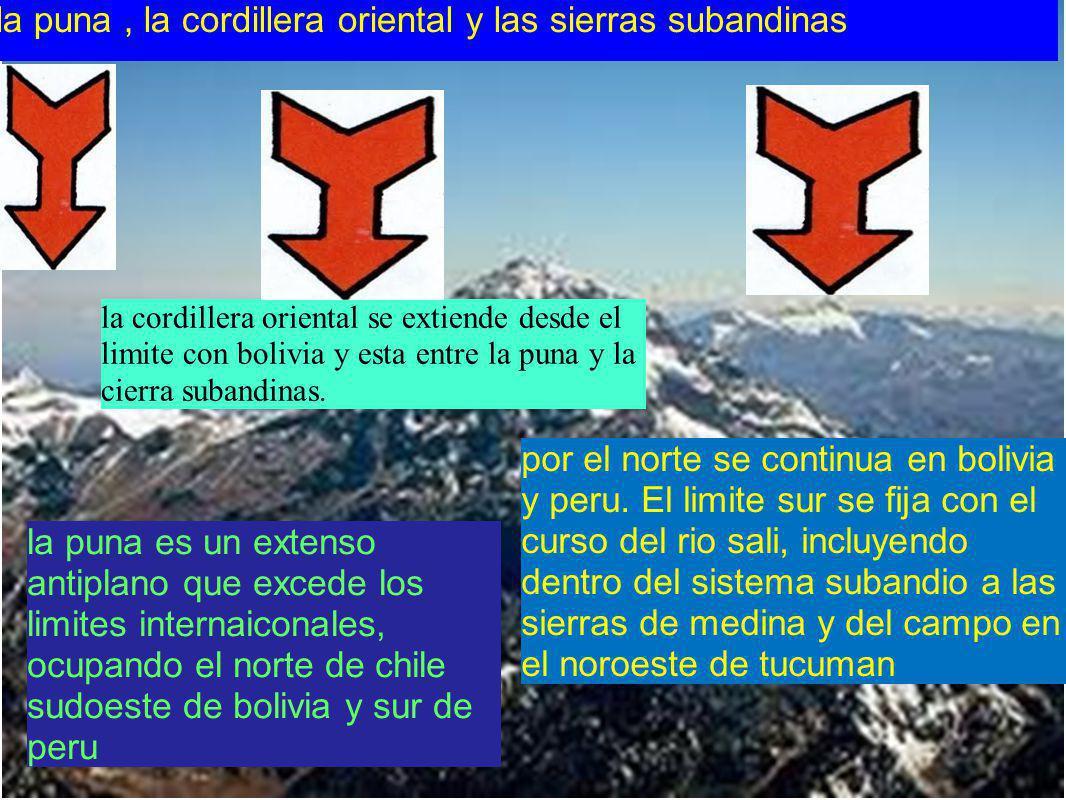 la puna es un extenso antiplano que excede los limites internaiconales, ocupando el norte de chile sudoeste de bolivia y sur de peru la puna, la cordi