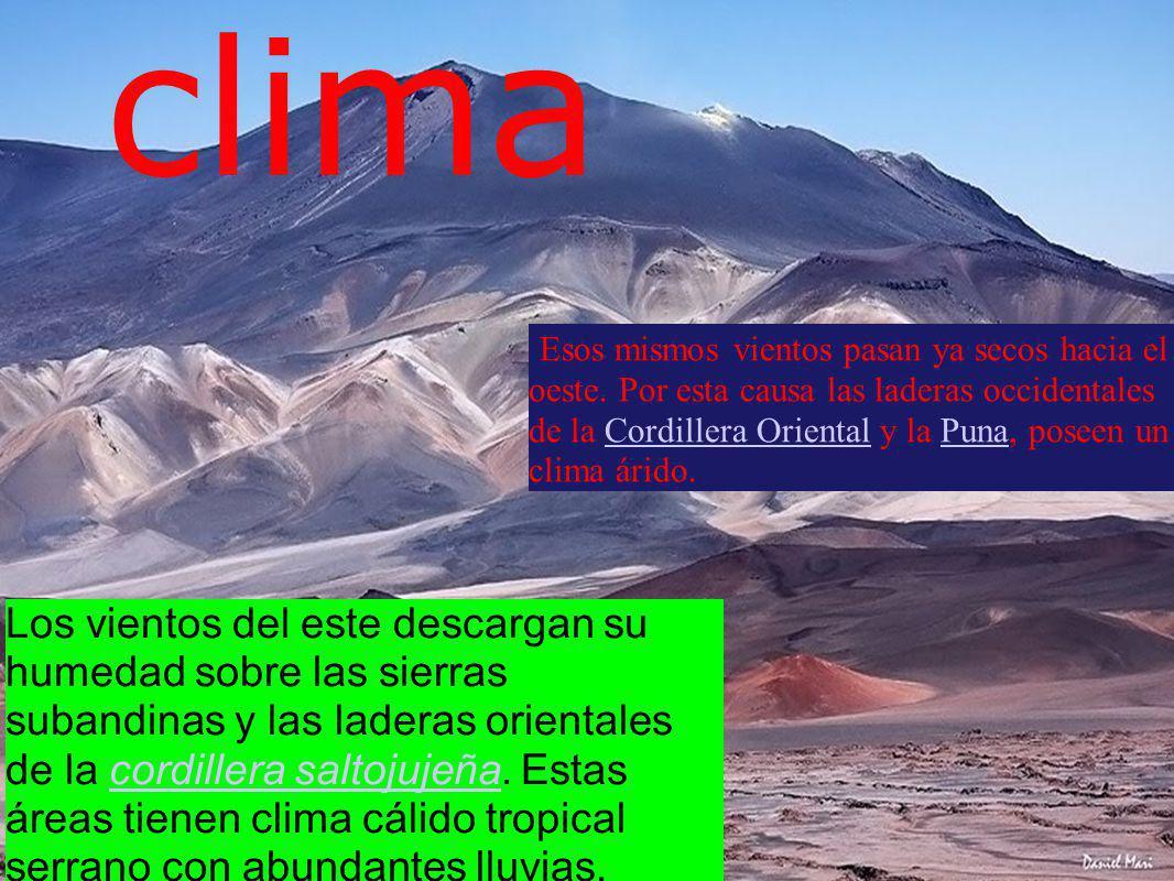 clima Los vientos del este descargan su humedad sobre las sierras subandinas y las laderas orientales de la cordillera saltojujeña. Estas áreas tienen