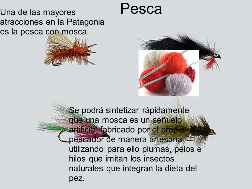 Pesca Una de las mayores atracciones en la Patagonia es la pesca con mosca. Se podrá sintetizar rápidamente que una mosca es un señuelo artificial fab