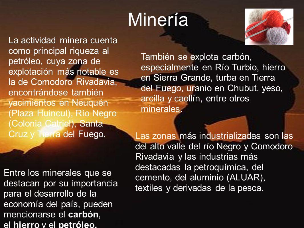 Minería La actividad minera cuenta como principal riqueza al petróleo, cuya zona de explotación más notable es la de Comodoro Rivadavia, encontrándose también yacimientos en Neuquén (Plaza Huincul), Río Negro (Colonia Catriel), Santa Cruz y Tierra del Fuego.