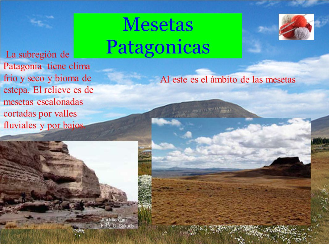 Mesetas Patagonicas La subregión de Patagonia tiene clima frío y seco y bioma de estepa. El relieve es de mesetas escalonadas cortadas por valles fluv