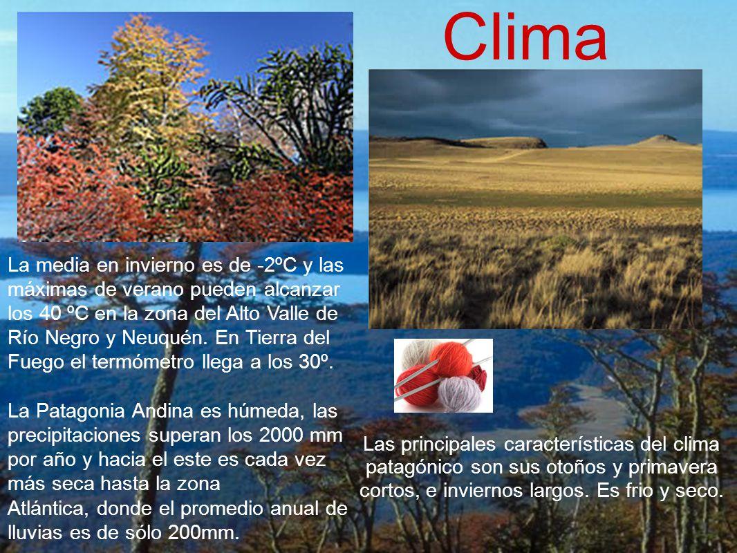 Las principales características del clima patagónico son sus otoños y primavera cortos, e inviernos largos. Es frio y seco. Clima La media en invierno