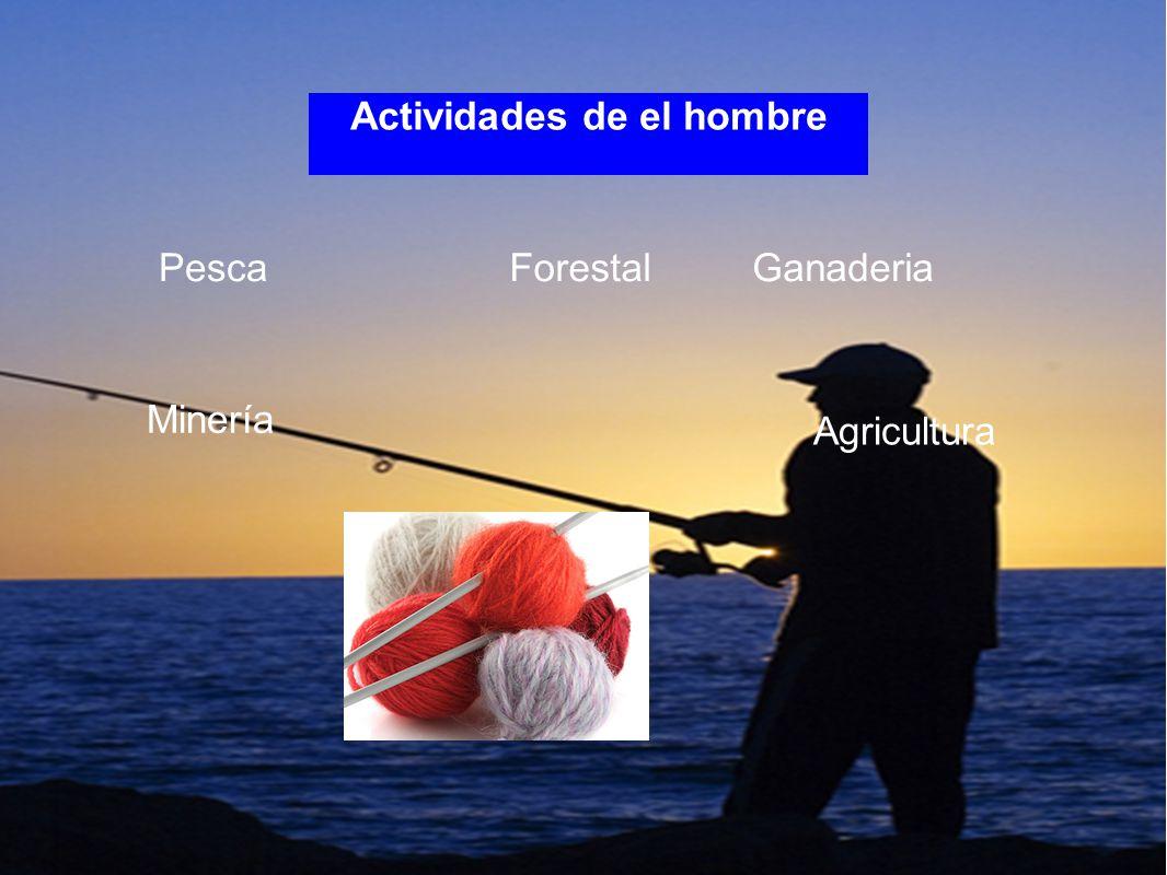 Actividades de el hombre PescaForestal Minería Agricultura Ganaderia